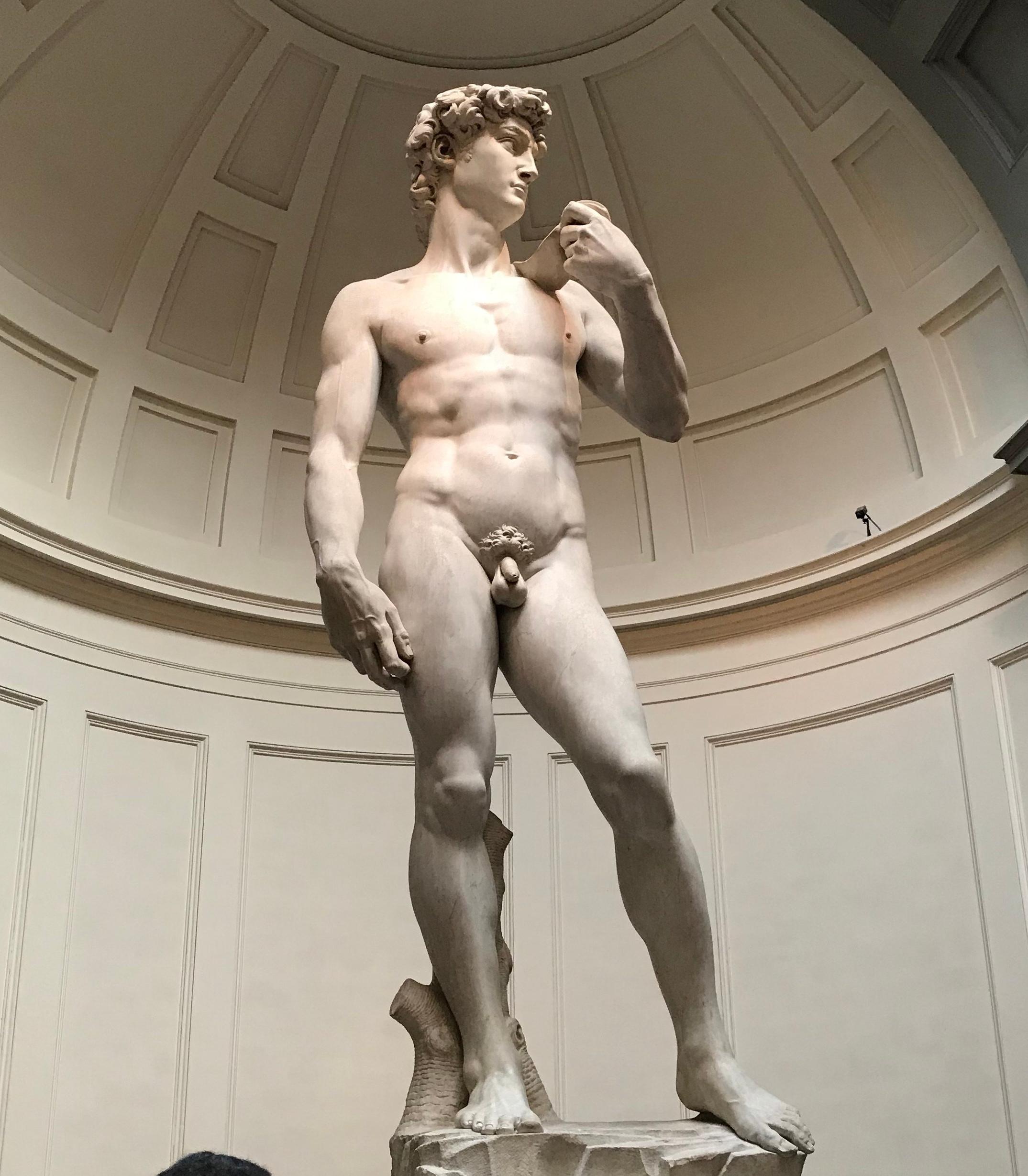 Sculpture, David, Michelangelo